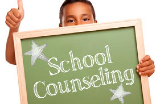 Counseling scolastico in USA